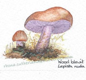 wood-blewitt